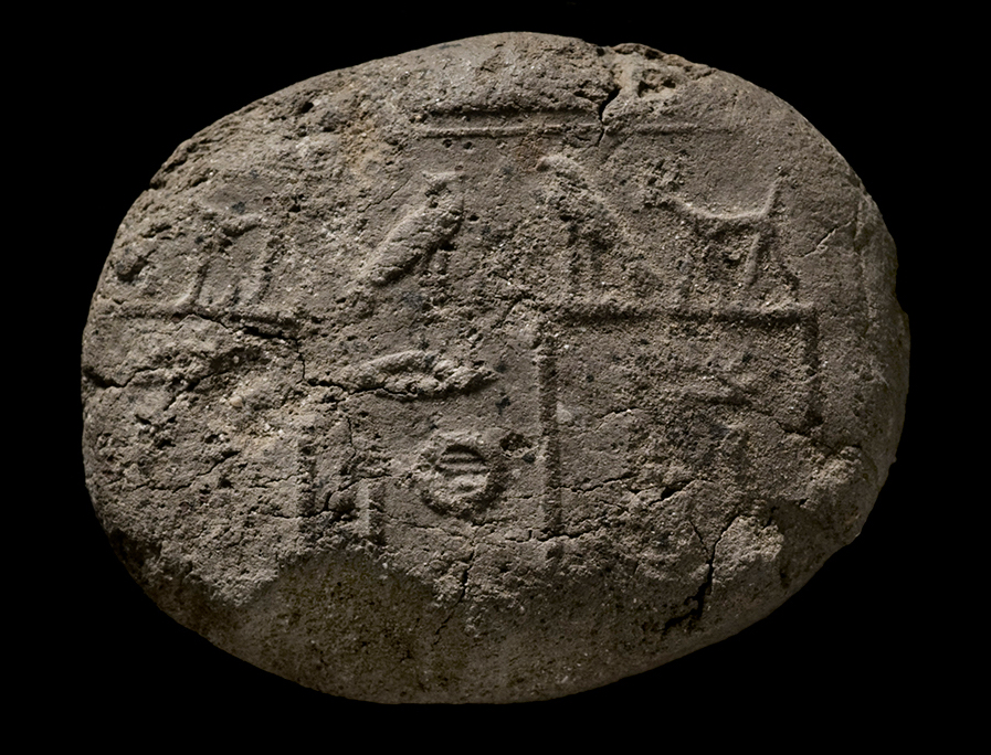 Fig. 11. Seal impression of King Khasekhemwy (c. 2650 BCE) excavated at the Shunet el-Zebib. Photo: Amanda Kirkpatrick / North Abydos Expedition © 2010