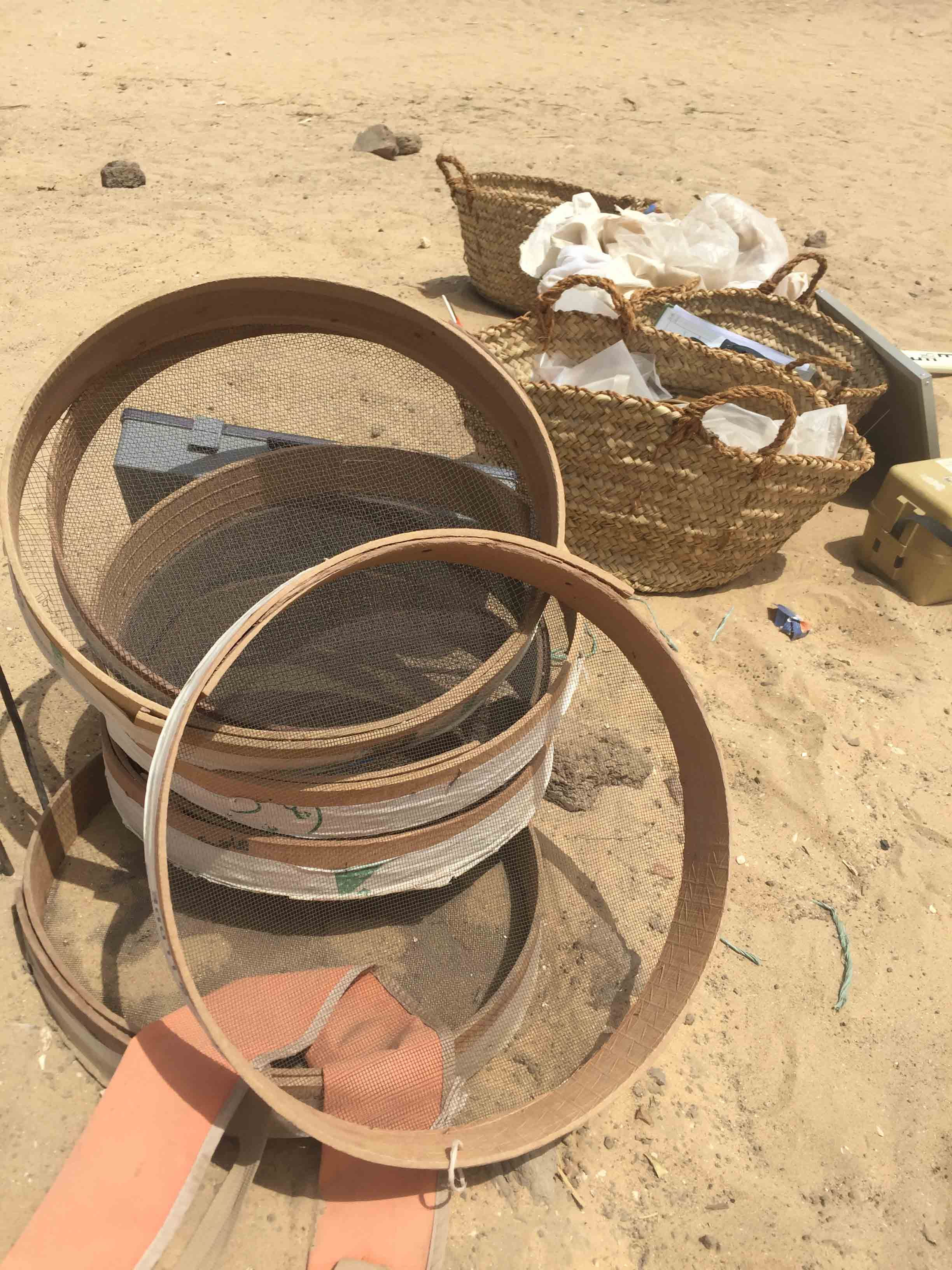 Fig. 6. Like all of the palm-leaf baskets used at Abydos, the  karabil  are produced locally. Photo: Wendy Doyon / North Abydos Expedition © 2019