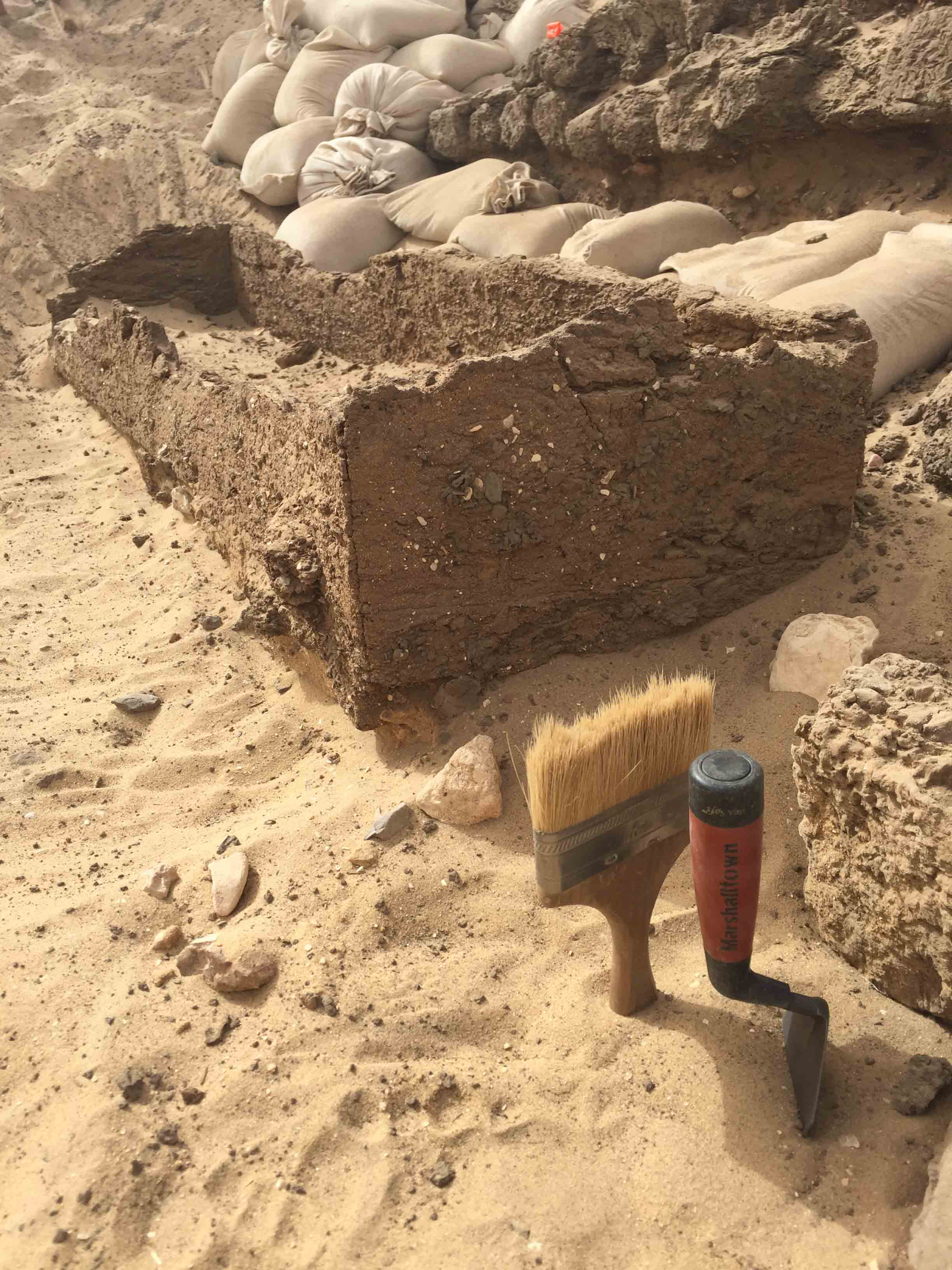 Fig. 3. Trowel & brush standing by for detail work at the Shunet el-Zebib. Photo: Wendy Doyon / North Abydos Expedition © 2019