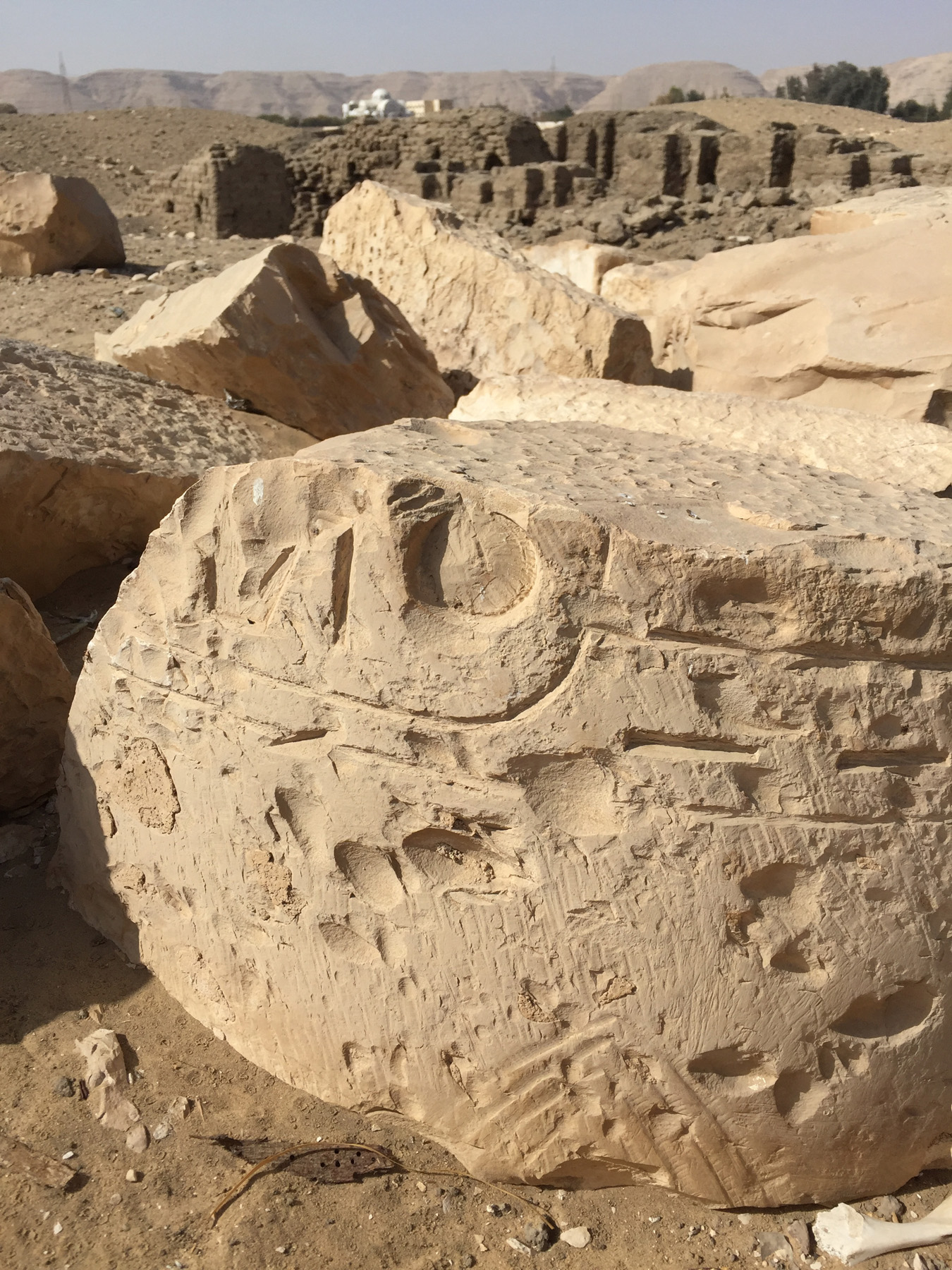 ANCSP19 © North Abydos Expedition.jpg