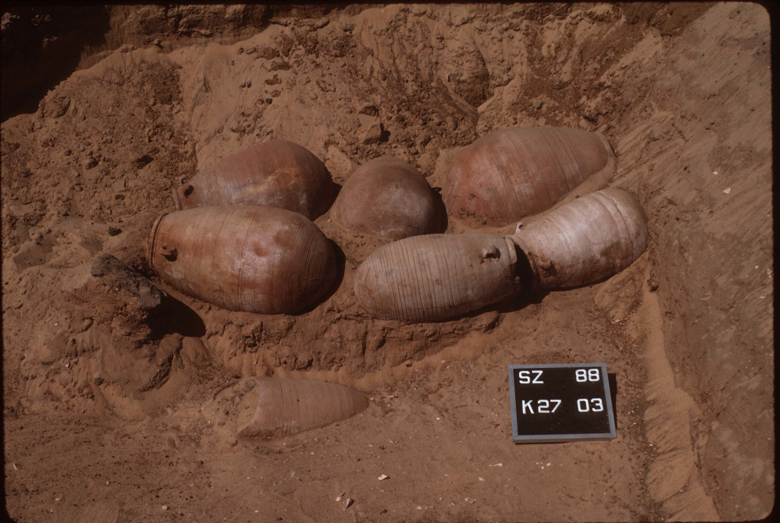 Fig. 5. Large pottery vessels containing ibis burials in situ, 1988. Photo: David O'Connor © North Abydos Expedition (formerly Penn-Yale-IFA), courtesy of the Penn Museum