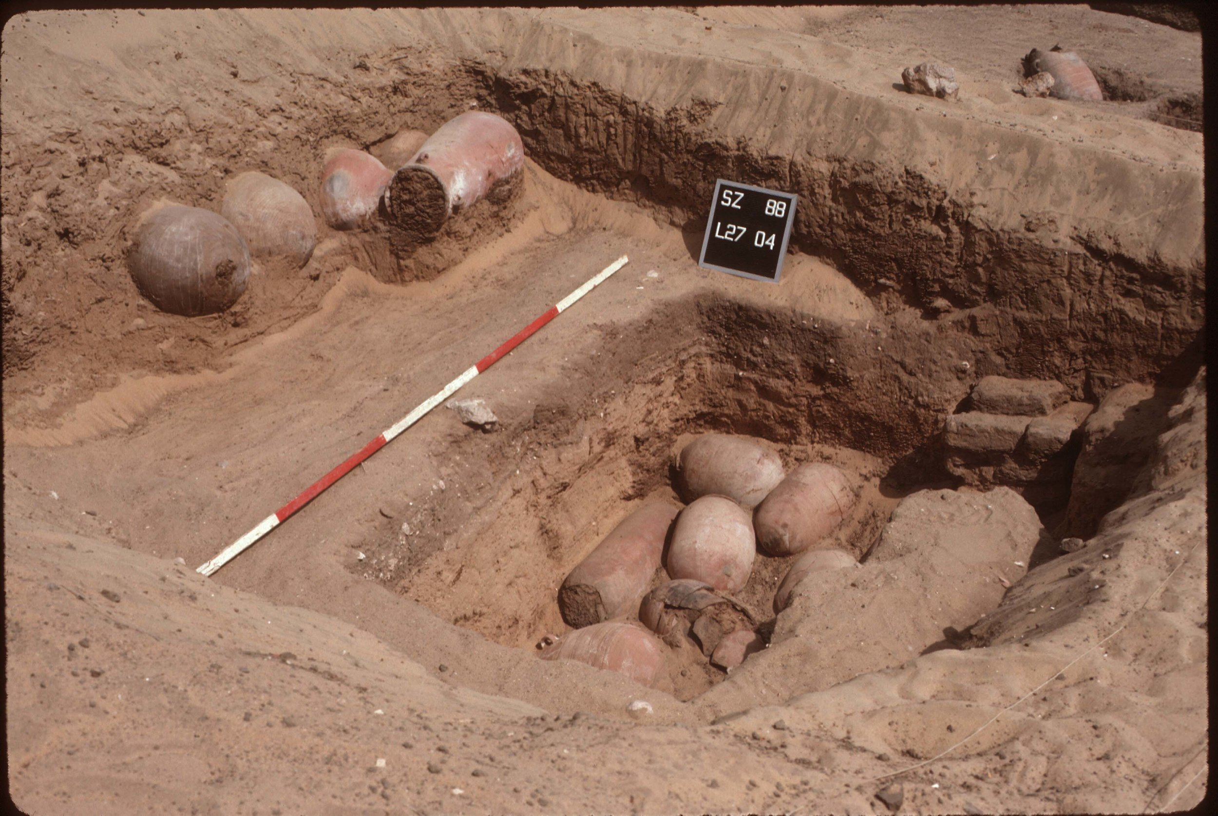 Fig. 8. Excavation of ibis burials inside the Shunet el-Zebib during the 1988 season. Photo: David O'Connor © North Abydos Expedition (formerly Penn-Yale-IFA), courtesy of the Penn Museum