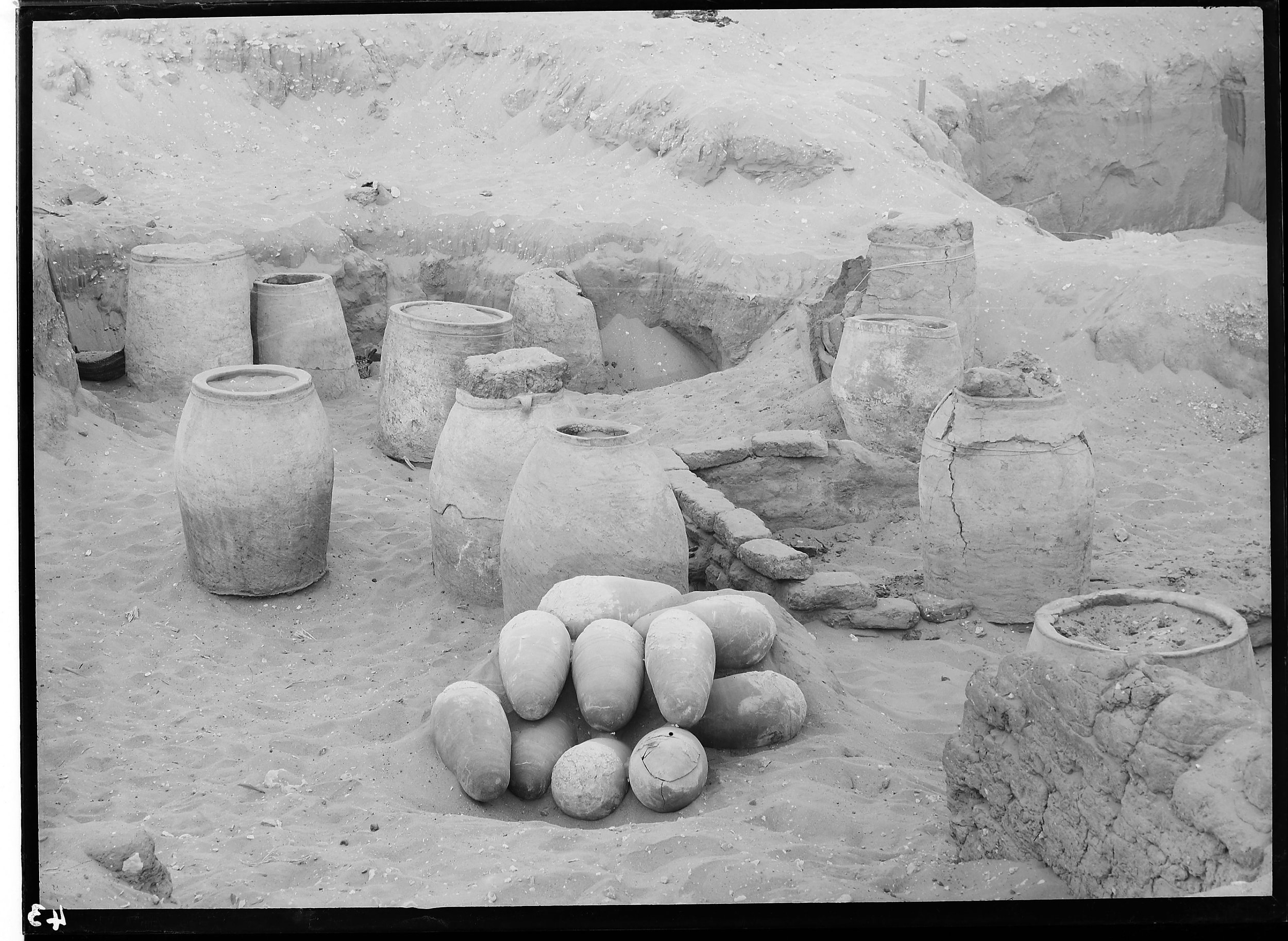 Fig. 7. Examples of excavated pottery vessels containing ibis burials from W.L.S. Loat's excavations in the early 20th Century. Photo courtesy of the  Egypt Exploration Society