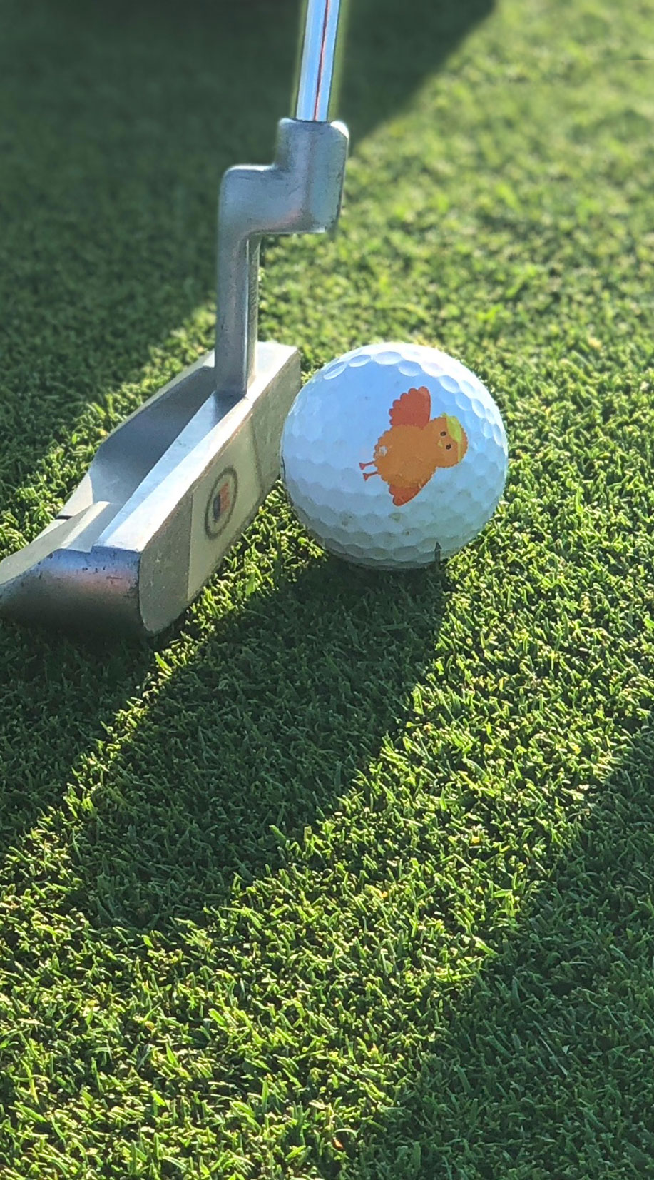Birdie Basic Membership Details - Year One Membership$999$200 off for Operation 36 Club Members. Email info@birdie-basics.com for coupon code.Annual Renewal$399Additional Chaptersof 8-session curriculum with associated materials$299