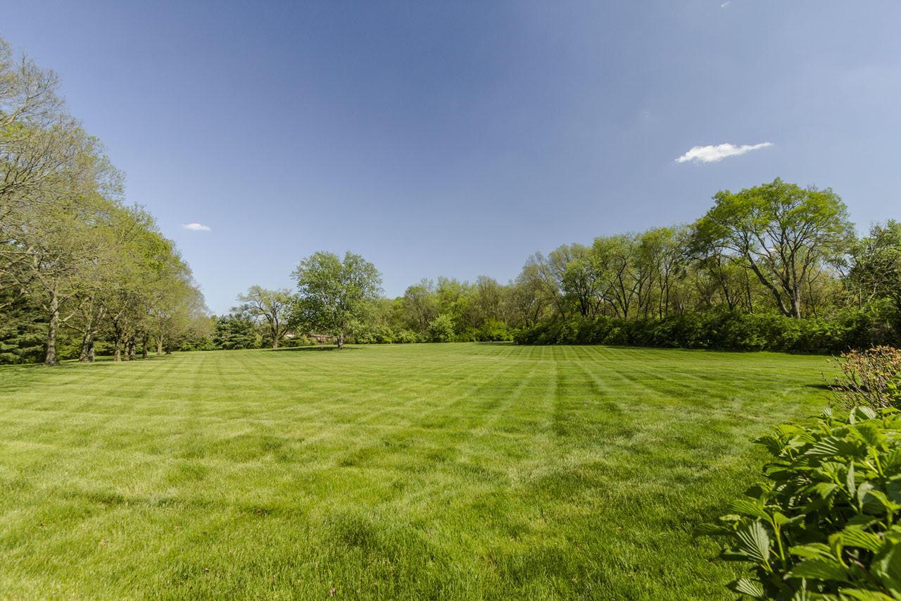 Backyard, acres of flat land.jpg