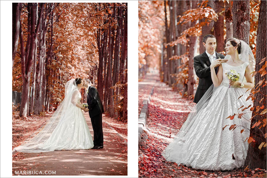 the bride and groom enjoy each other without guests on the background of beautiful beautiful red trees in a beautiful park in Fremont.