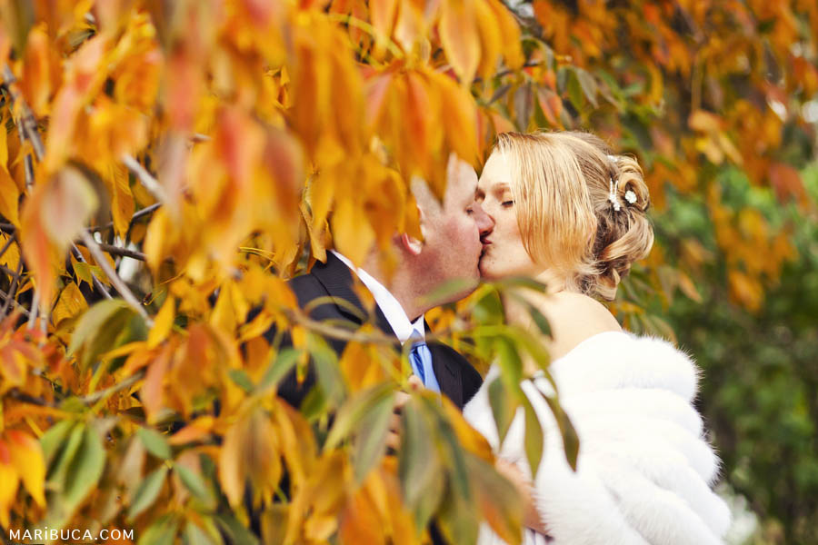 bride and groom among orange trees in Great America, Santa Clara