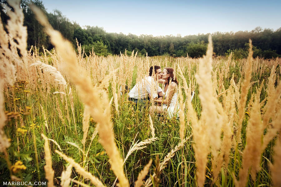 girl and guy are hiding and kissing in a meadow among the high yellow grass
