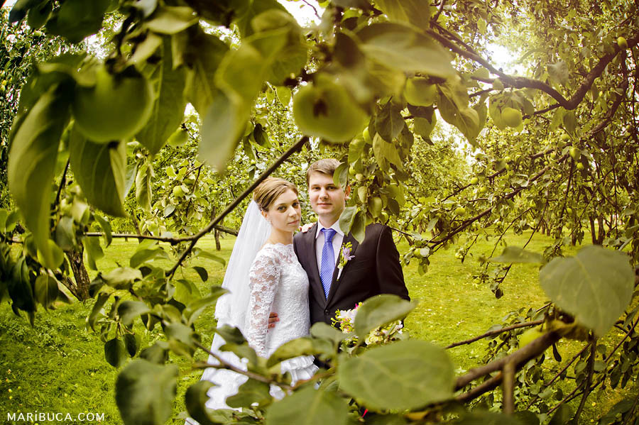 the bride and groom are surrounded by green apples in the apple orchard at sunset.