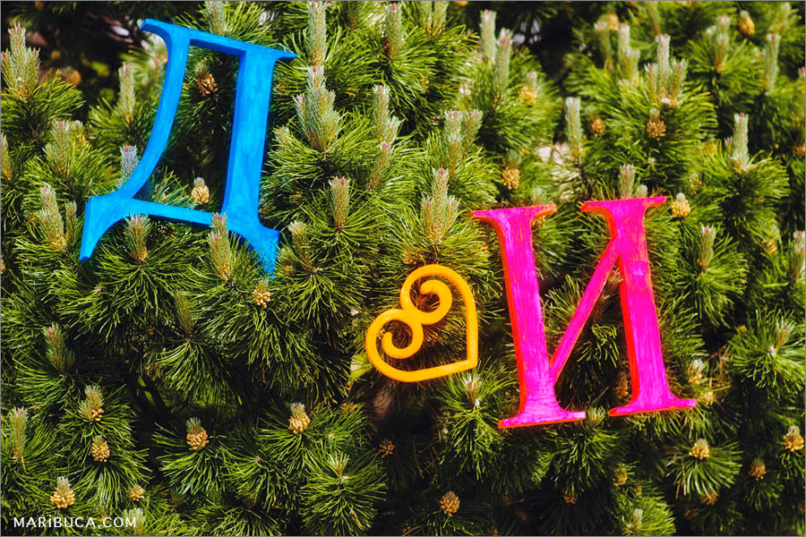 """Letters D, E and orange heart represent """"and"""". All decorations located in the Christmastree with pinese."""
