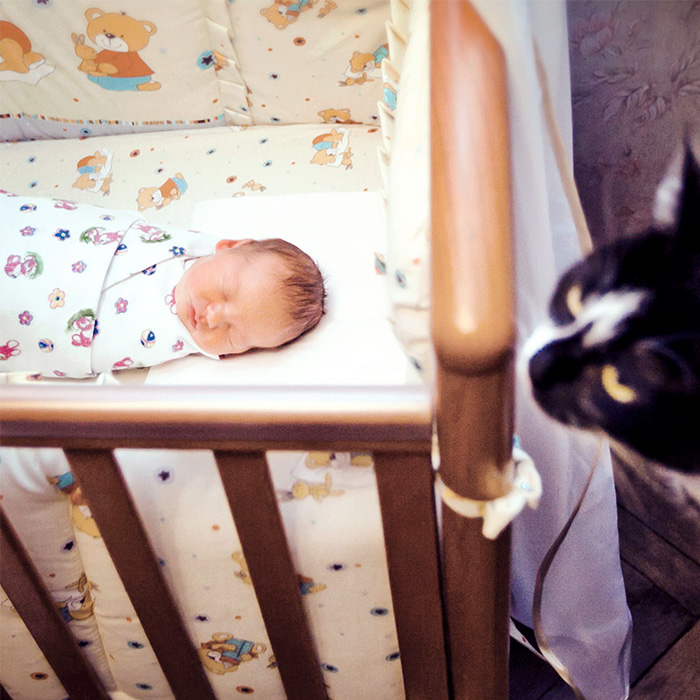 02-newborn-baby-black-cat.jpg
