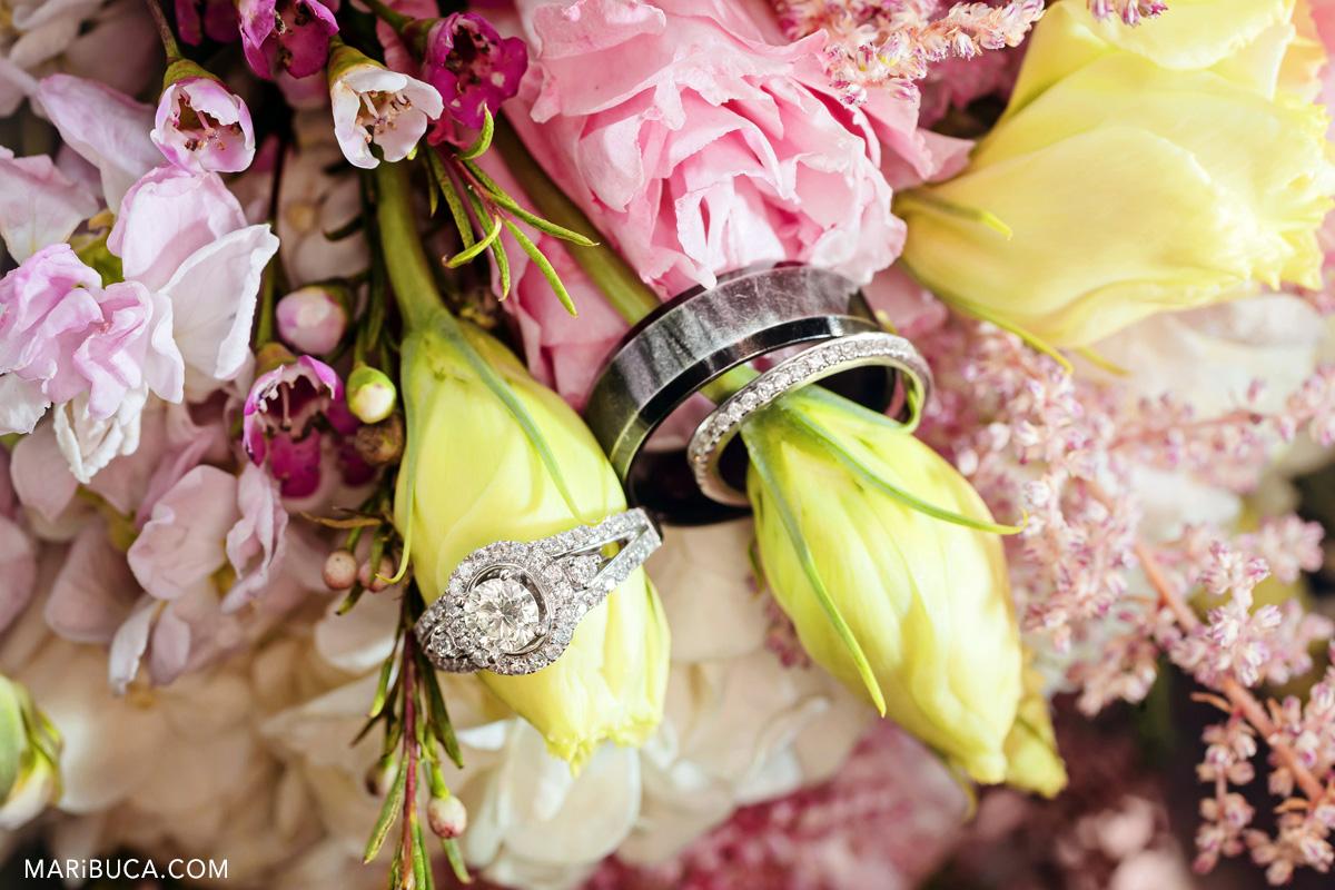 74_73-wedding-rings-santa-cruz-images.jpg