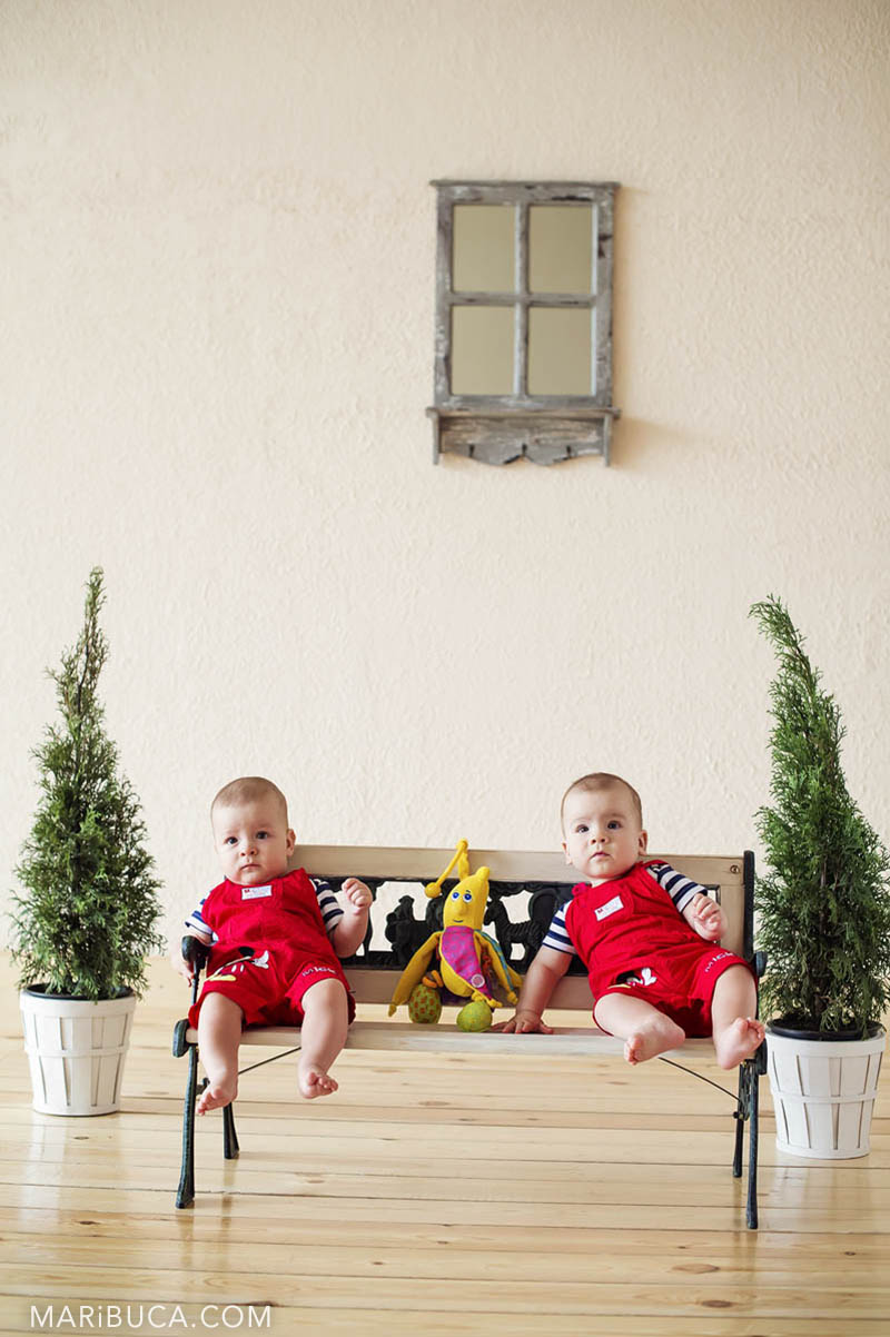 11-twins-christamas-tree-studio-san-jose.jpg