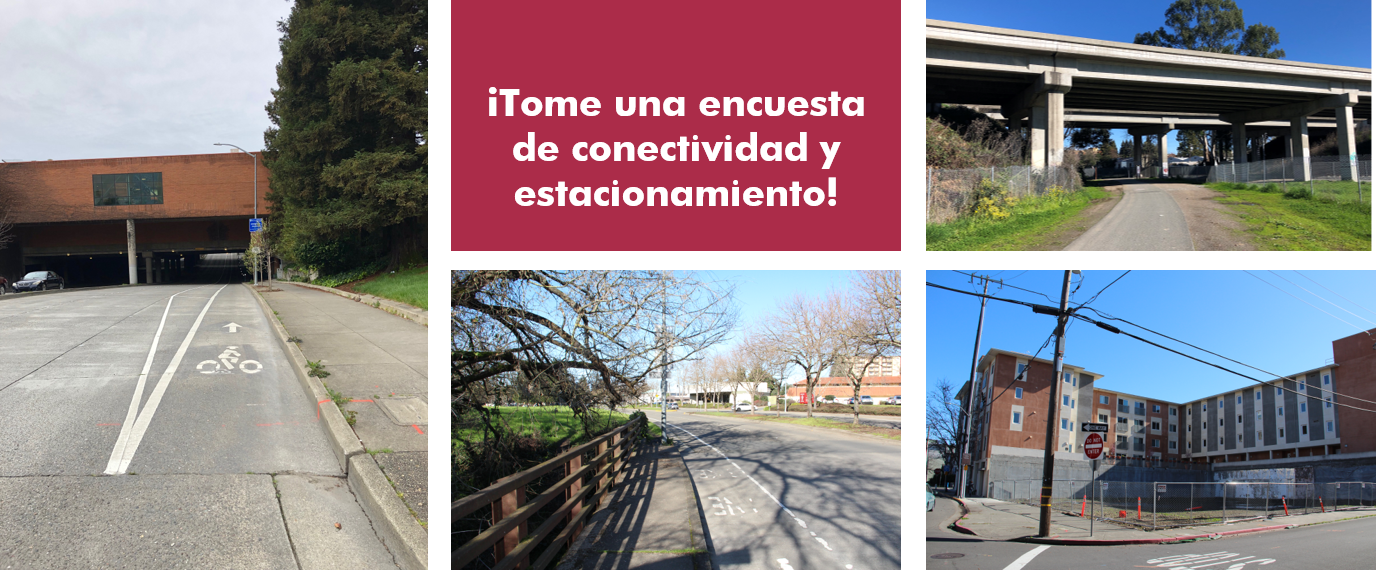 spanish web.png