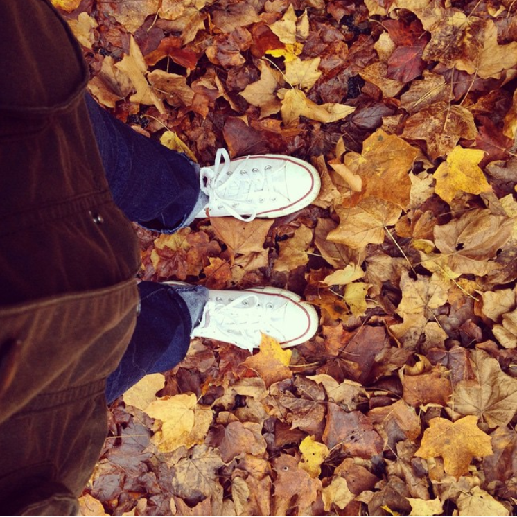 sneakers and leaves.PNG