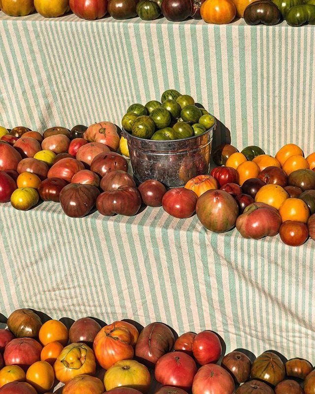 Fall Rainbows #madeinhygge #fall #allthecolors #tomatoes #farmfresh