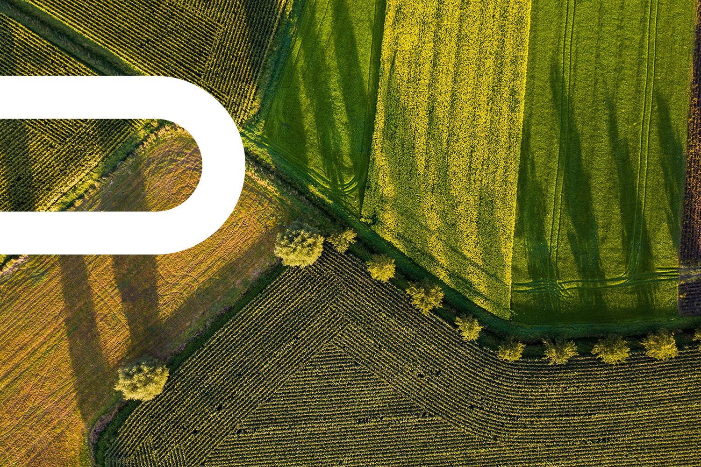 BridgeLane_Agriculture2.jpg