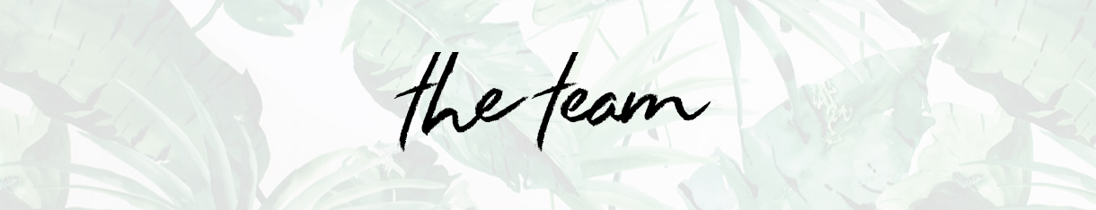 The Team banner