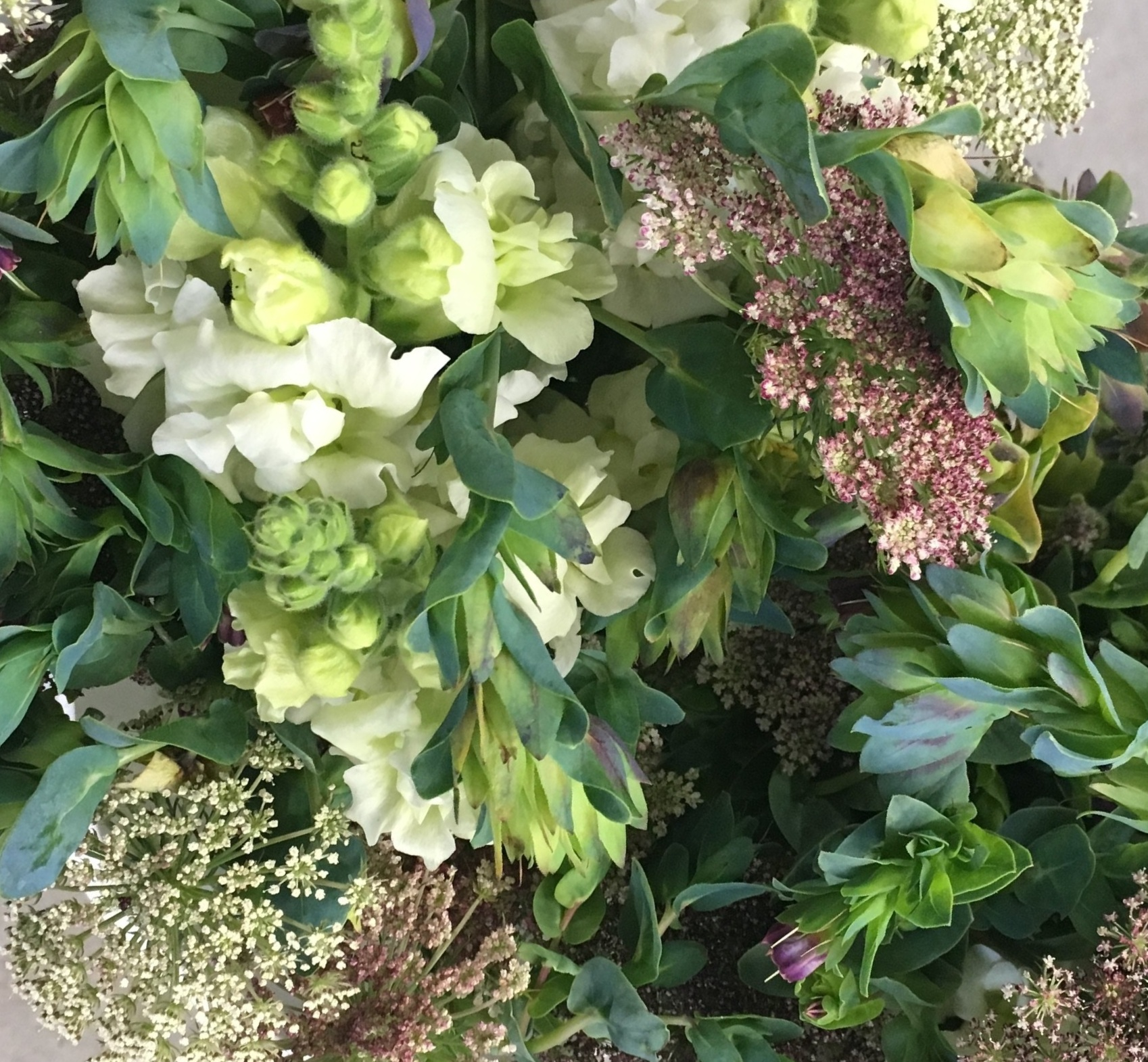 Floral Subscriptions + Flower Bunches - Harvested Just For You