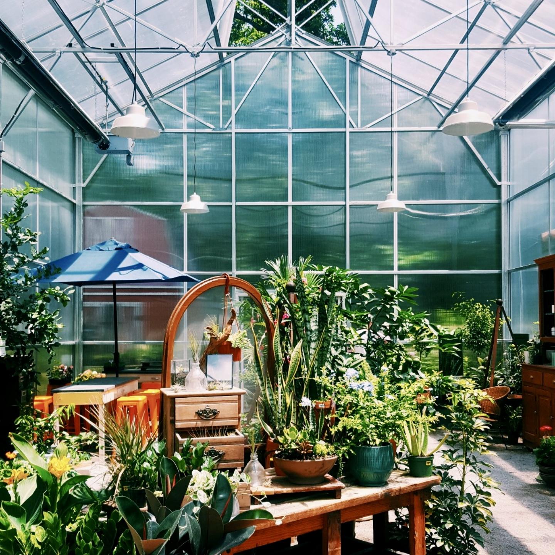 Maypop Garden & Coffee Shop in St. Louis, MO
