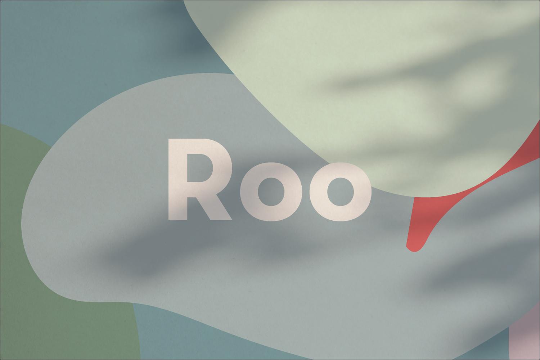 Roo5.jpg