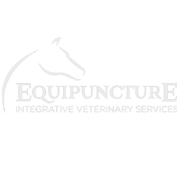 logo_Equipuncture.png