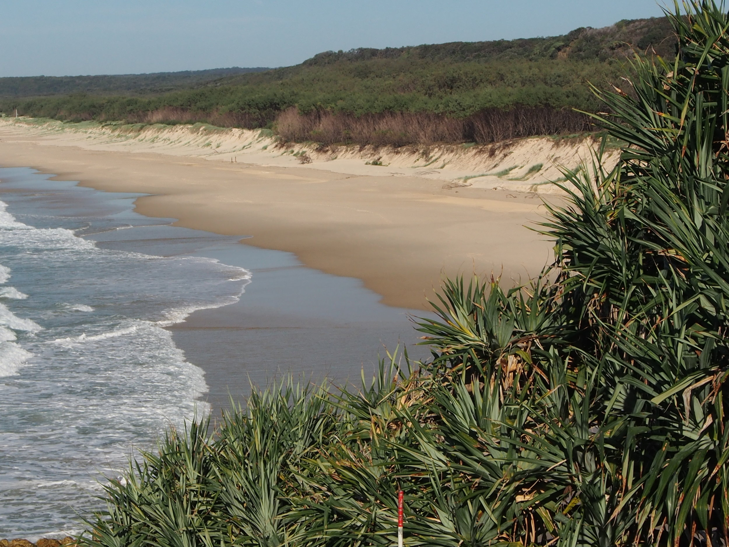 View of the beautiful North Stradbroke Island beach from Point Lookout Headland © Everick Foundation Ltd