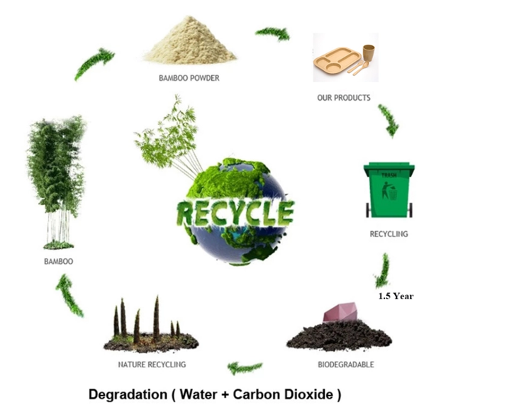 sustainability 2.png