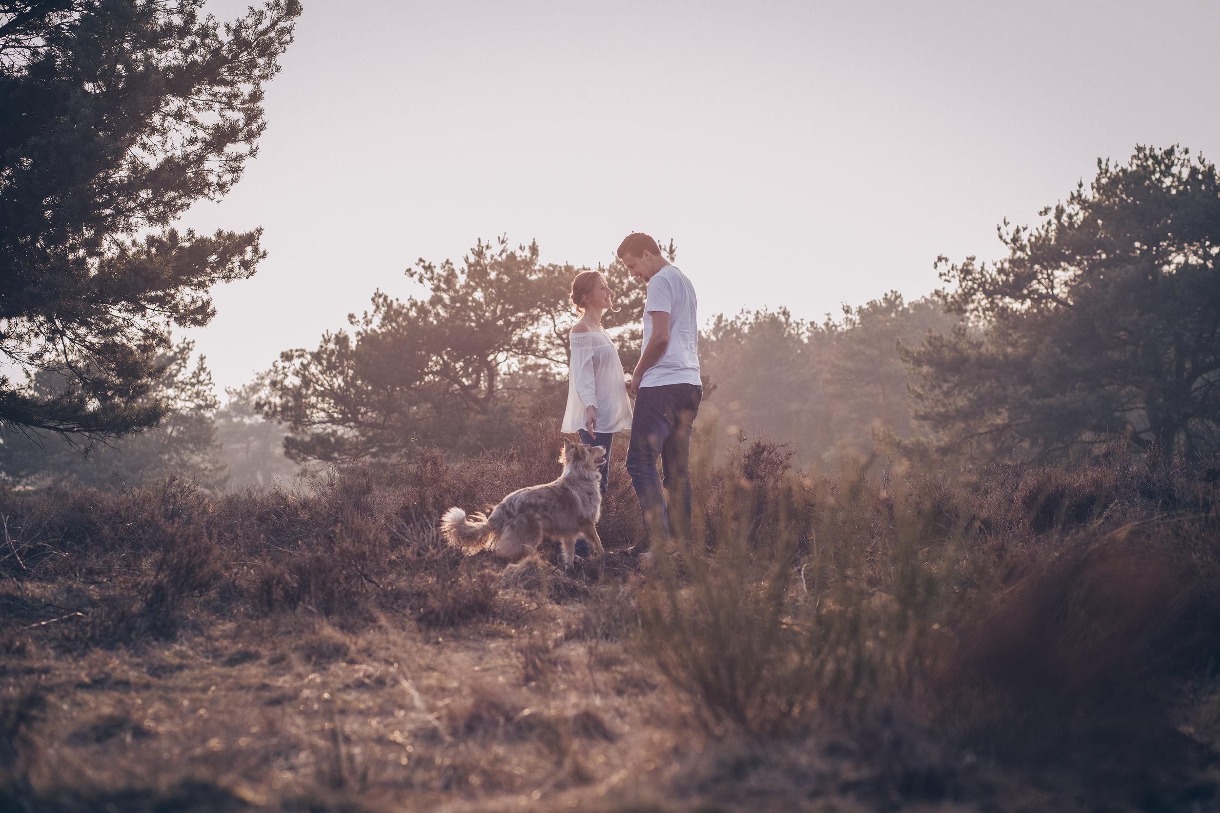 Paarshooting mit Hund in der Mehlinger Heide2