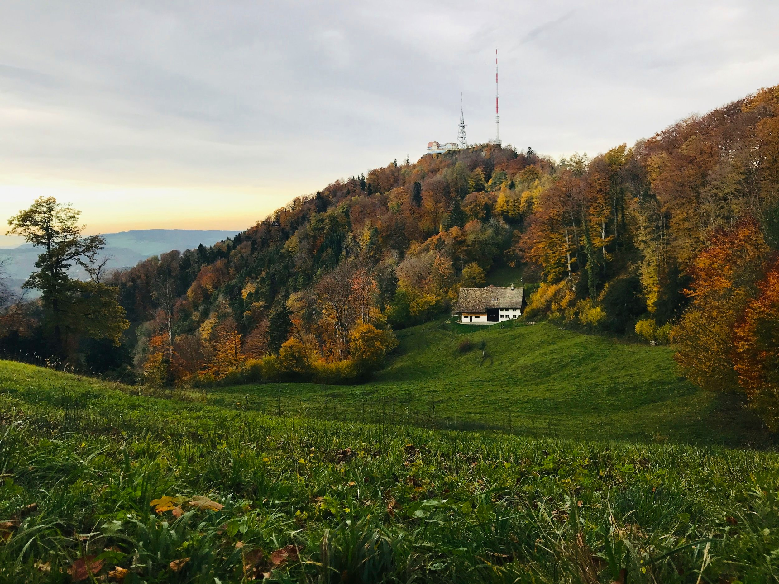 Uetliberg in the fall.jpg