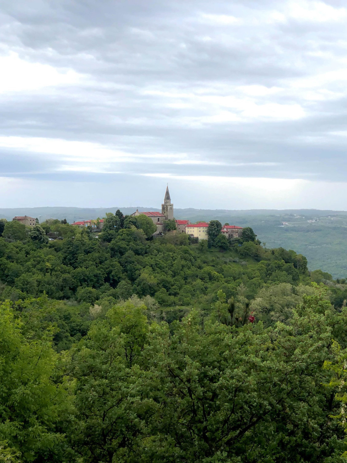 View of Grožnjan, Istria, Croatia