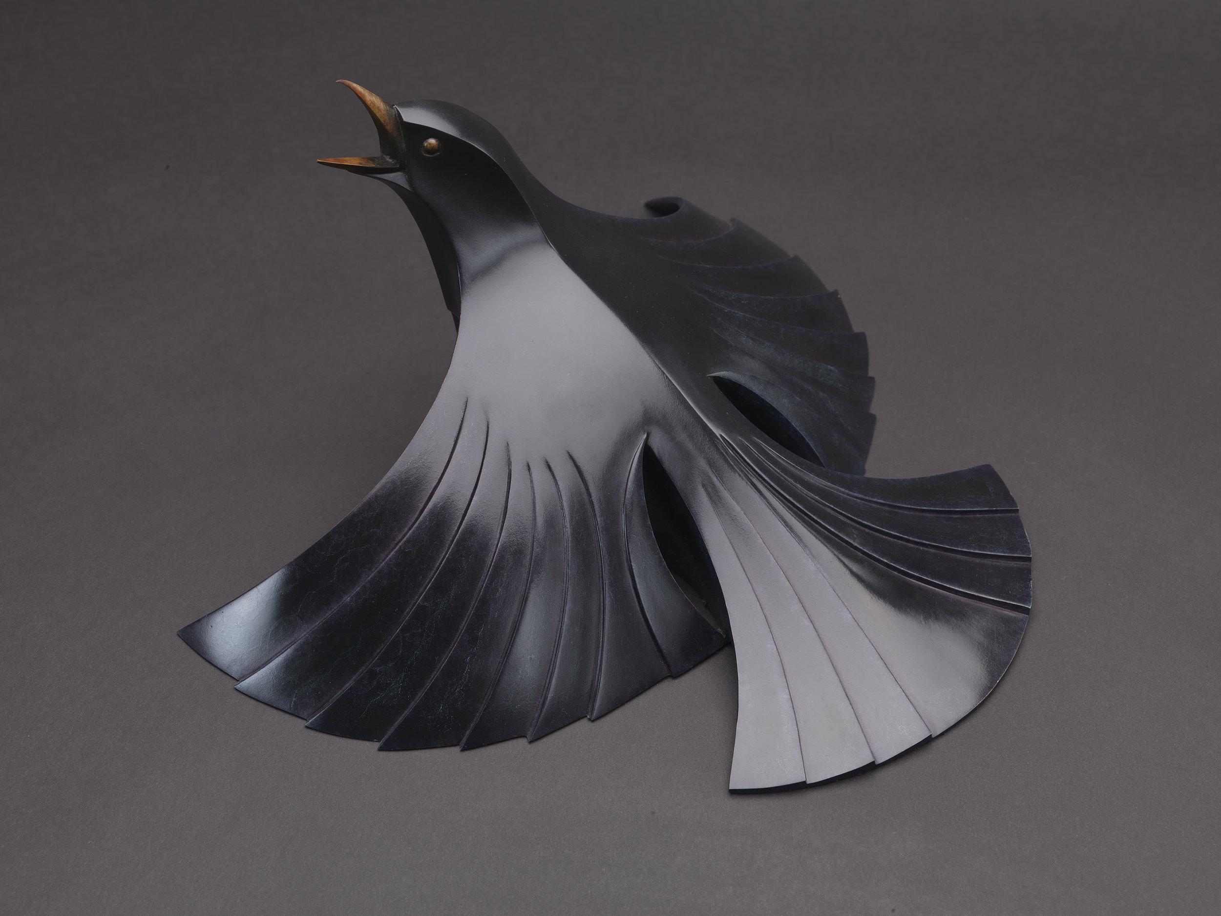 Blackbird sunbathing Life size..jpg