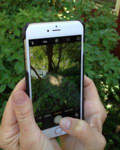 iPhone hold Vert