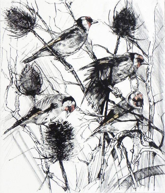 Emerson Mayes - Four Feeding Goldfinches