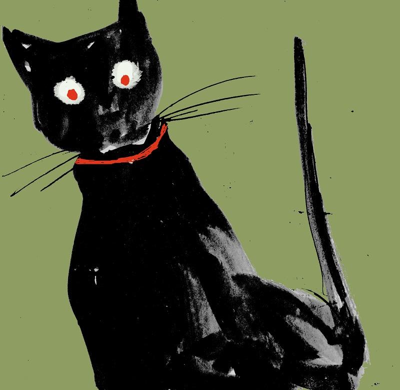 Holly Argyll - Cat