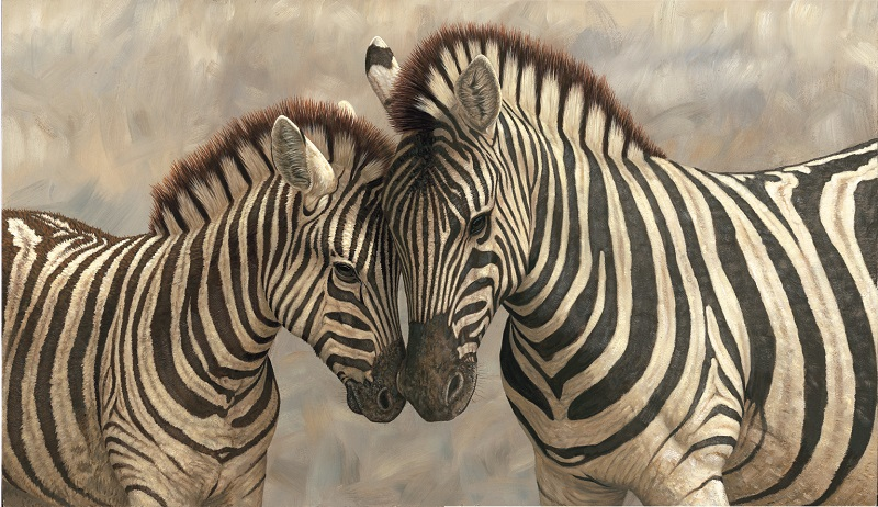 Robert Fuller - Zebra with Young