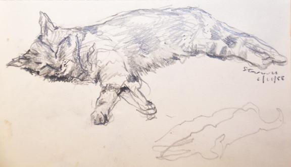Stephen Carvill - Sleeping Cat