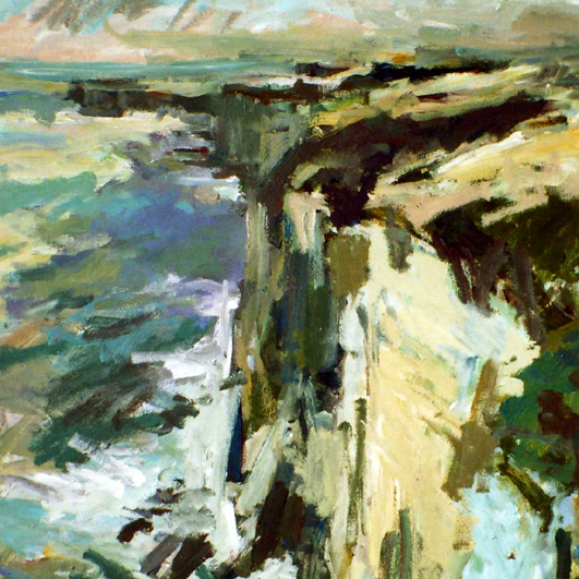 Barry Carter - Bempton Coast