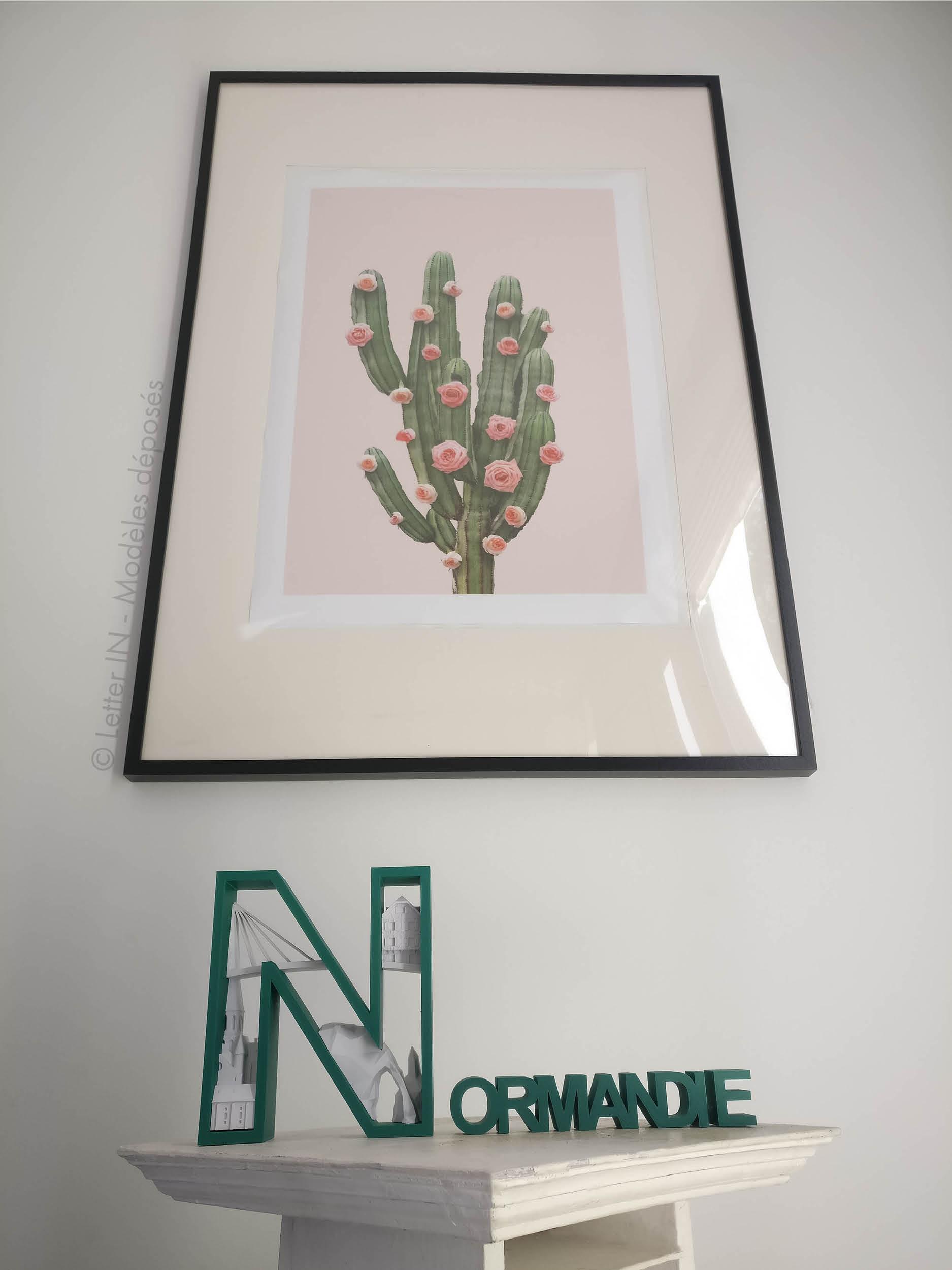 Normandie vert et blanc cactus