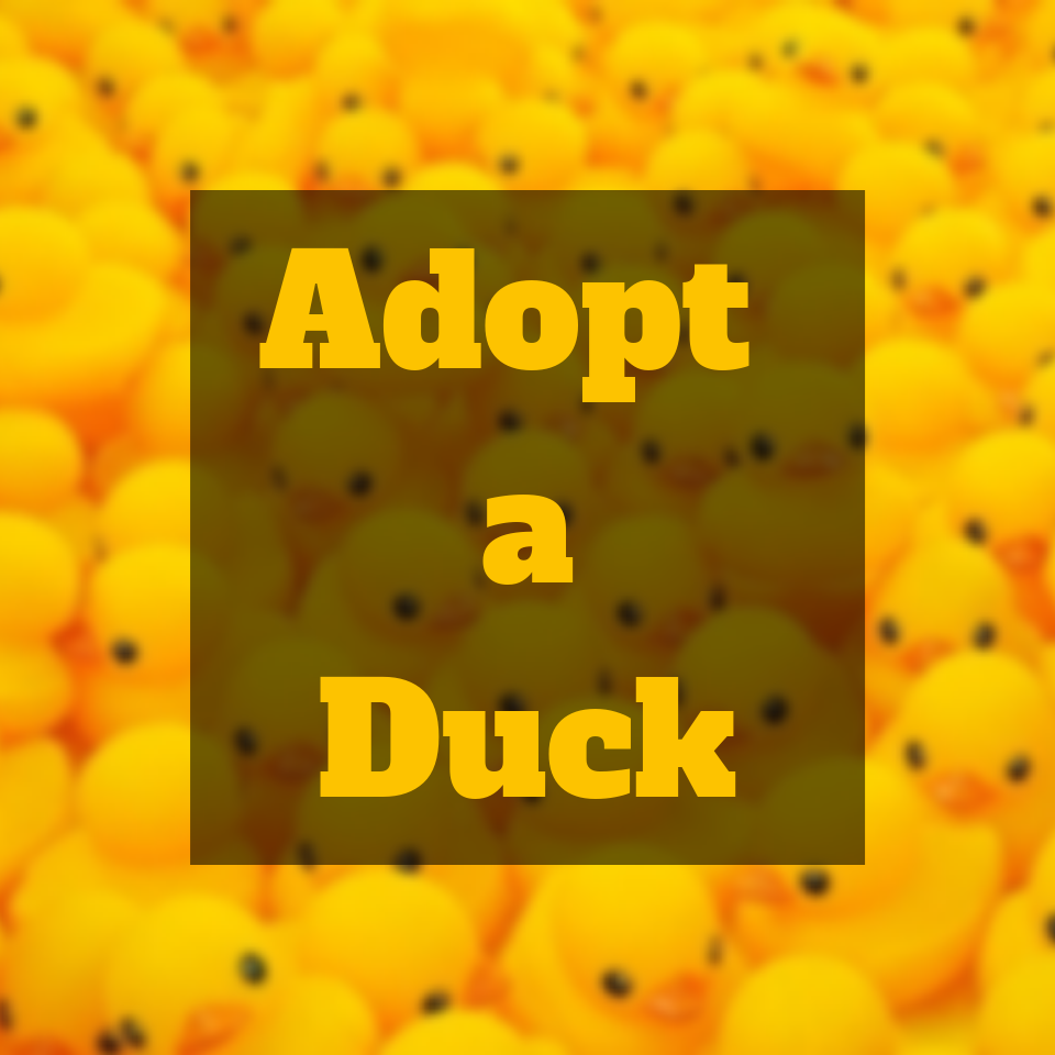 Copy of Adopt a duck.png