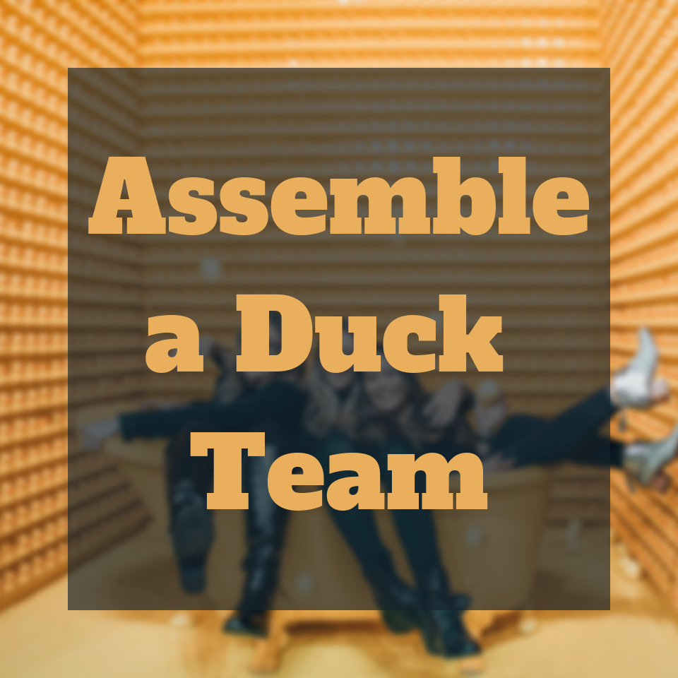 Copy of Assemble a Duck Team.png