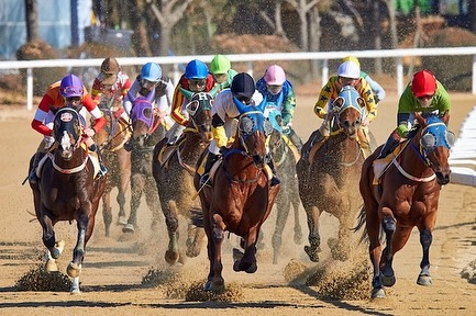 Call now to book your charter flights for the Kentucky Derby races. Jets are booking quickly. Call us today to reserve your jet to or from the region! #flyshy