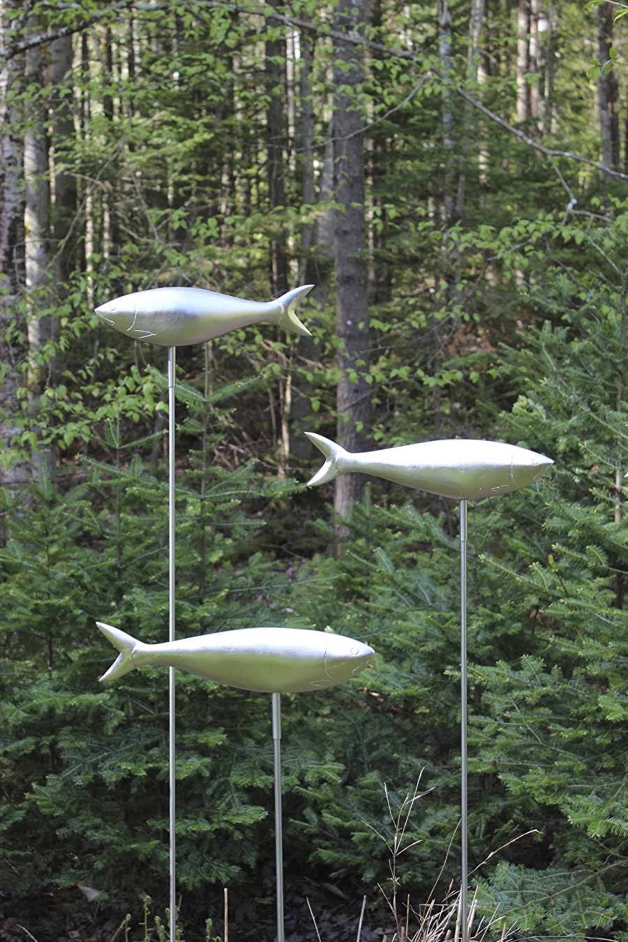 Alewives, $750 each