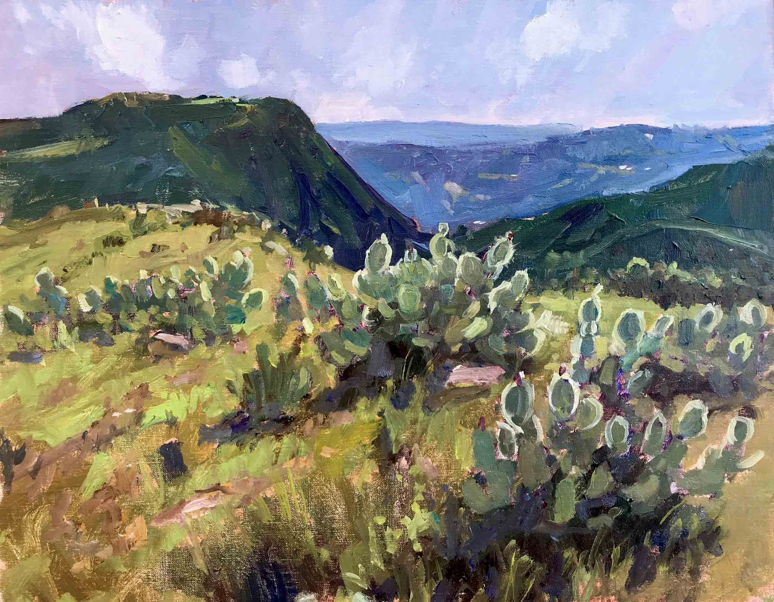 We enjoyed hiking the 8,300 acres of Santa Rosa so much, we went back a second day to explore the trails leading to the top of Monument Hill, which had panoramic views of grasslands, rolling hills and distant snow-capped mountains as far as the eye could see .    Monument Hill, 11x14 en plein air oil painting by Brad Betts