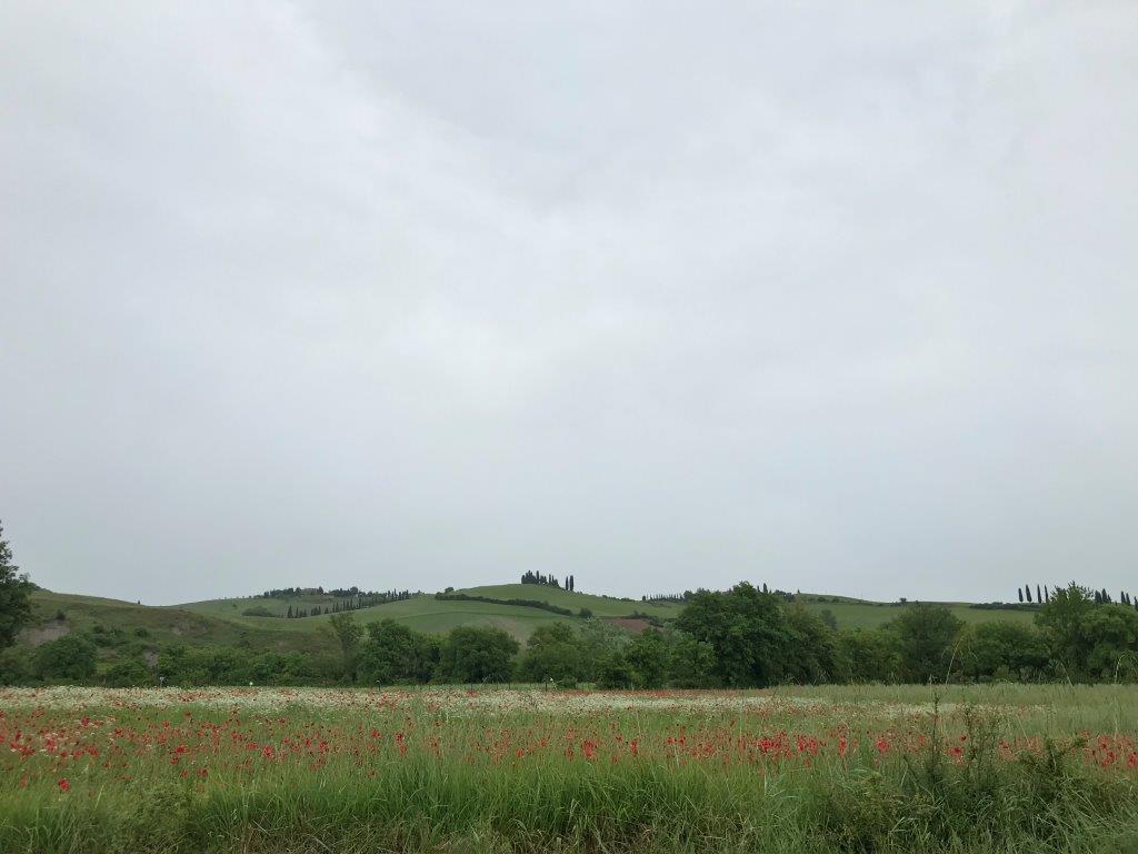 Tuscany (3).jpg