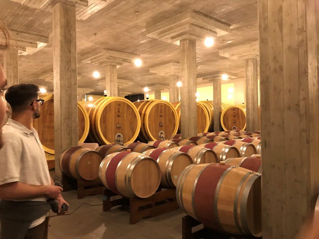 Oak barrels at the vineyard.