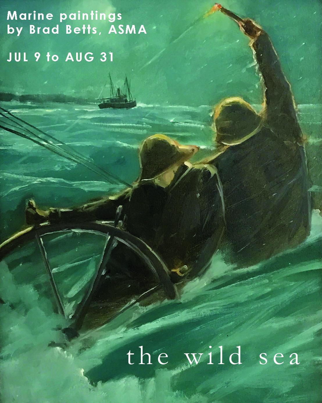 the wild sea poster.jpg