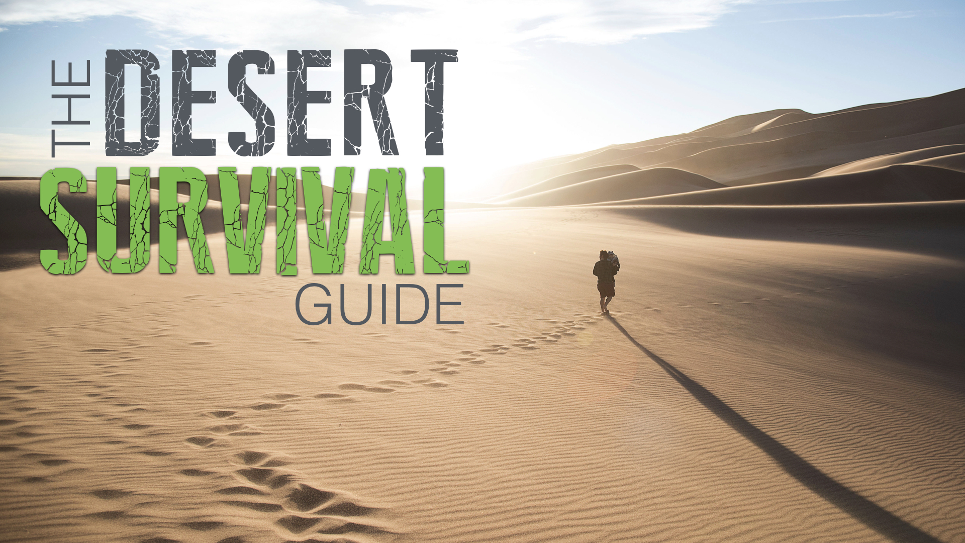THE DESERT SURVIVAL GUIDE - JACOB BORTNIK | 7.15.2018 | WATCH