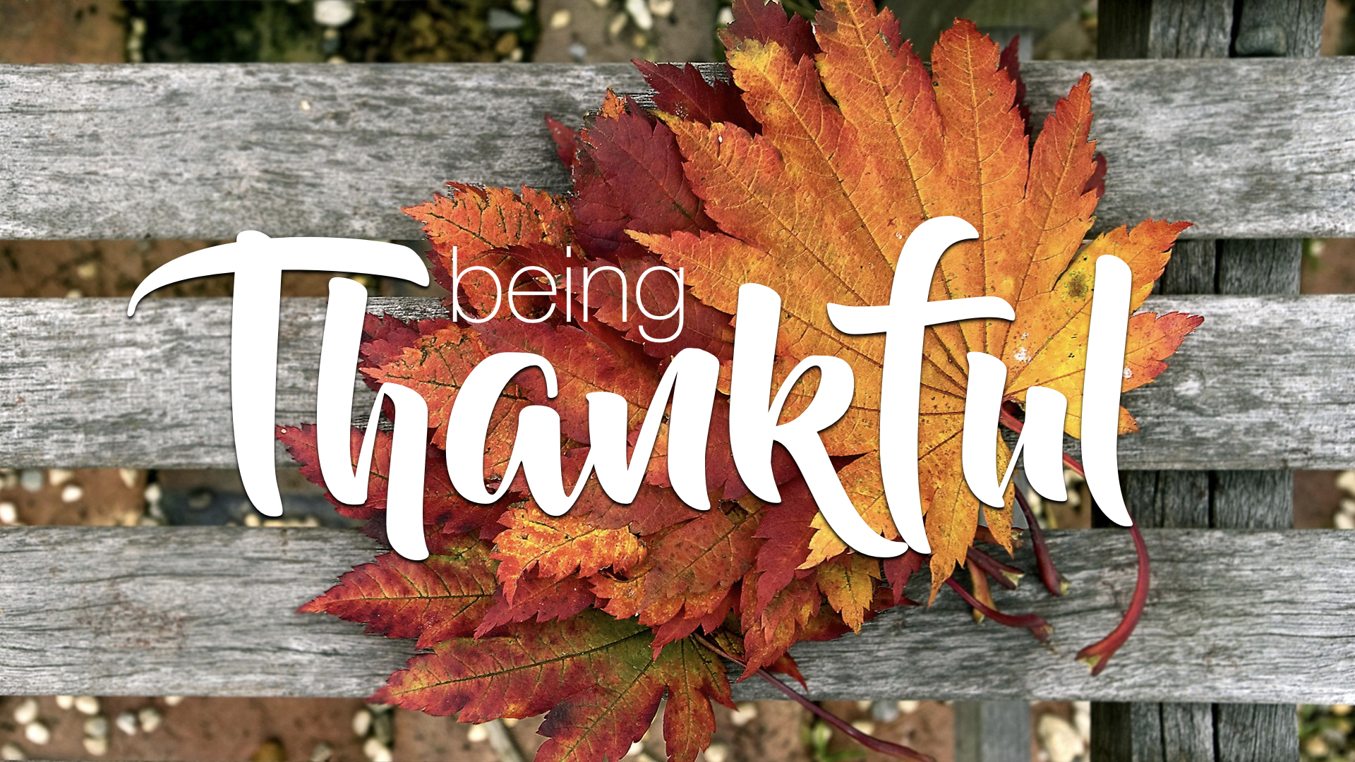 BEING THANKFUL | THANKSGIVING 2017 - PHIL CHORLIAN | 11.26.2017 | WATCH