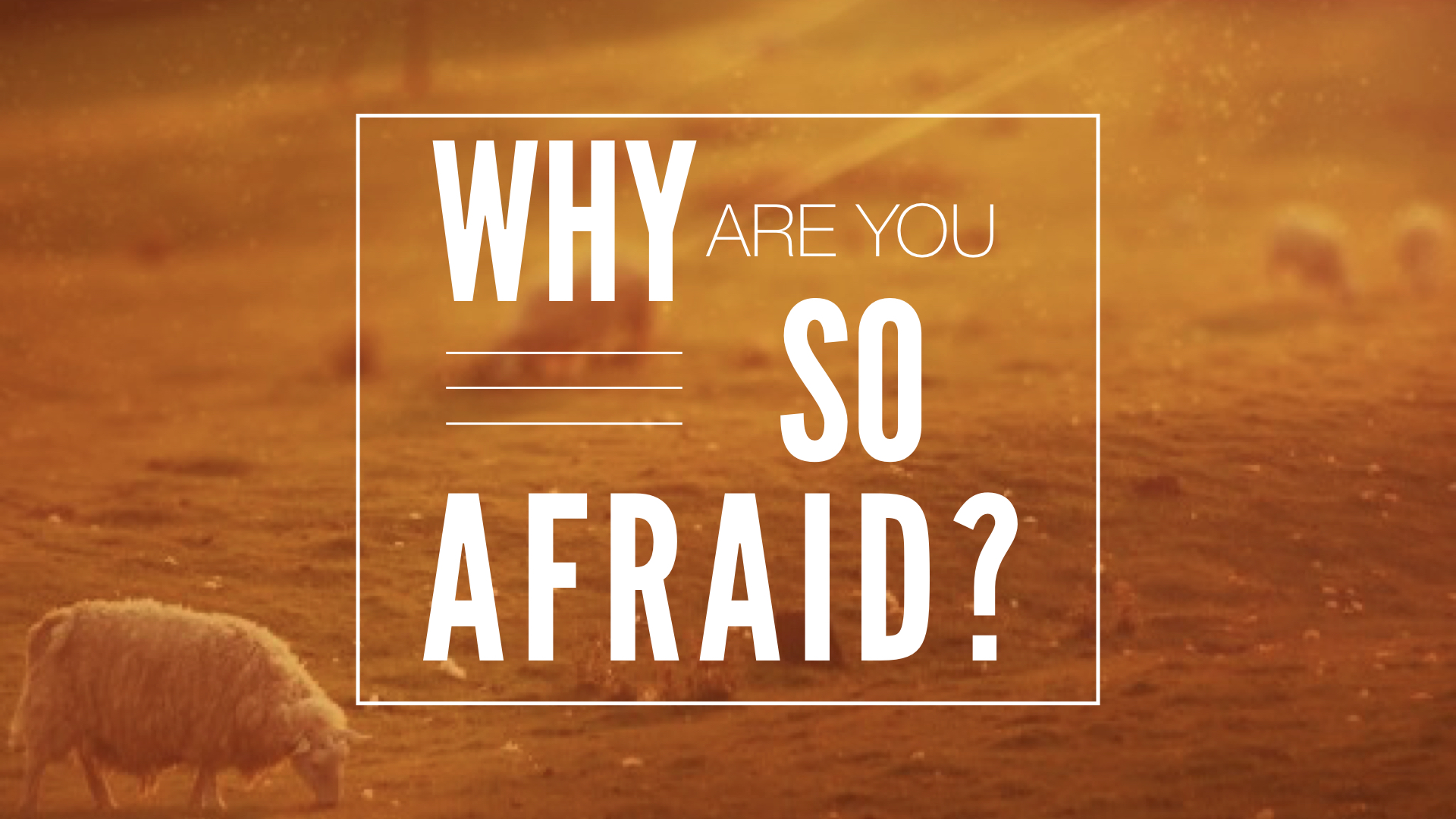 WHY ARE YOU SO AFRAID? - PHIL CHORLIAN | 9.3.2017 | WATCH